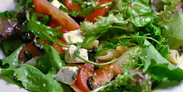 salad-and-protein-diet-plans
