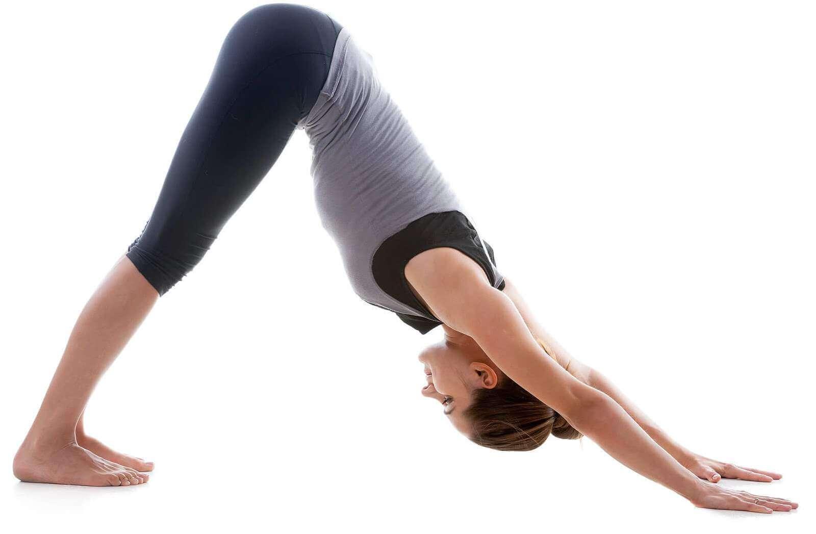 Yoga-DogPose
