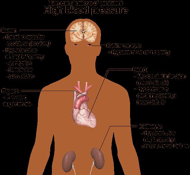 human-body-Blood-Pressure