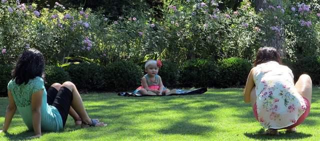 picnic-family-garden