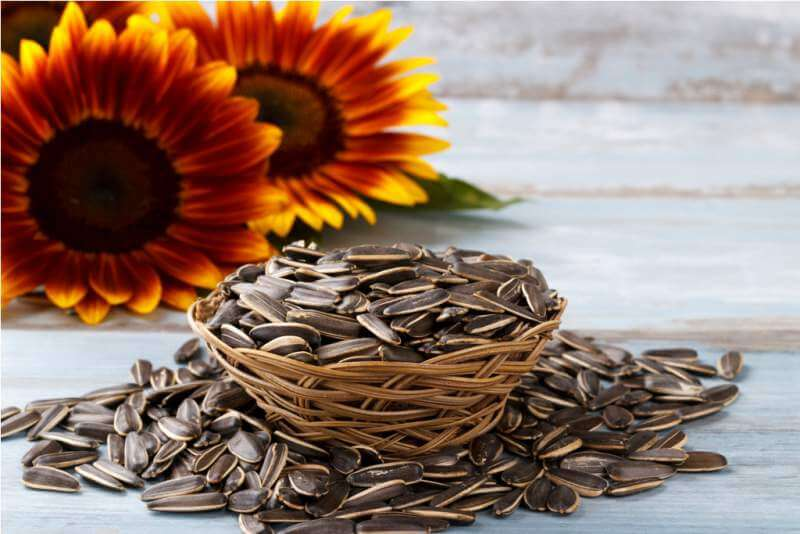 roasted-sunflower-seeds