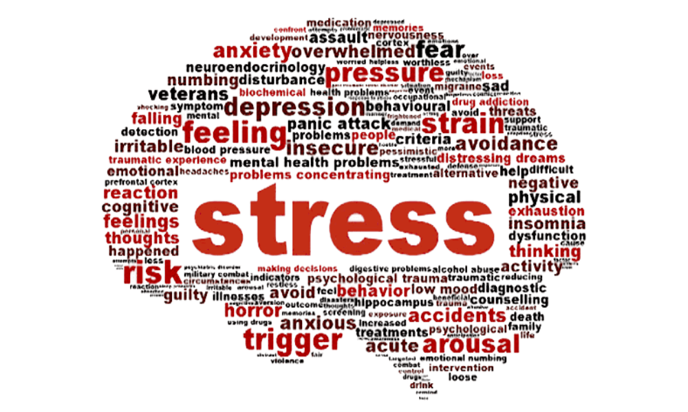 Stress words