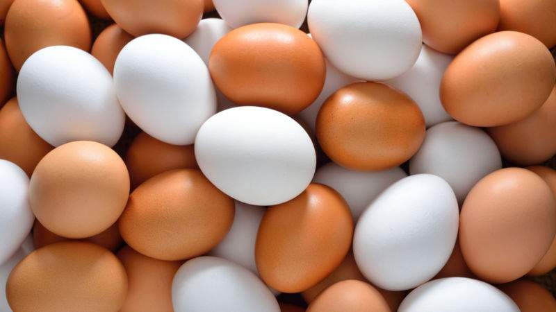 eggs white and brown