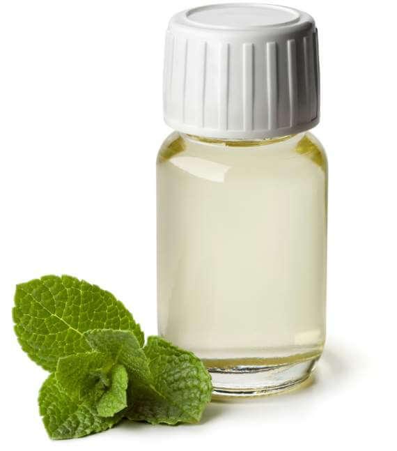 peppermint-oil-in-a-bottle