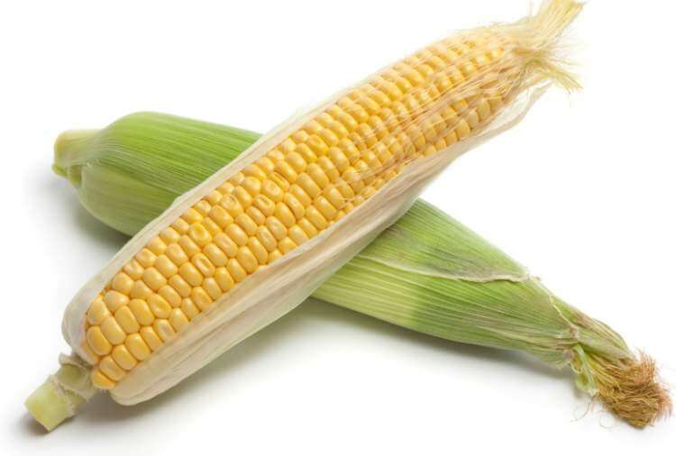 fresh-yellow-sweet-corn