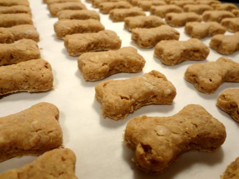 oatmeal-peanut-butter-dog-treats