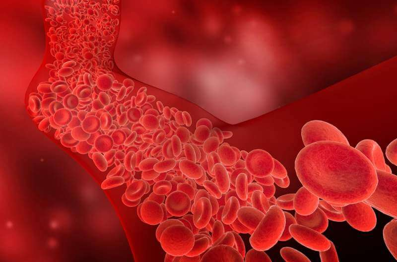 flow-of-red-blood-cells-into-the-blood-vessel