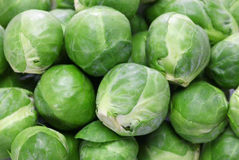 fresh-brussels-sprouts