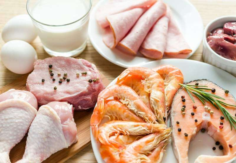ingredients-for-protein-diet
