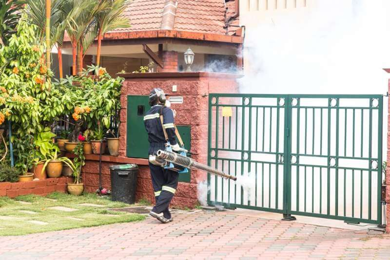 worker-fogging-residential-area-with-insecticides