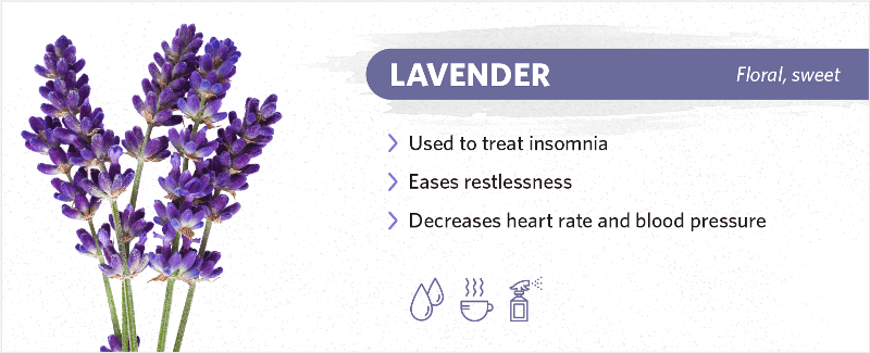 scents-to-help-you-sleep-lavender