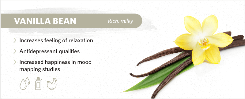 scents-to-help-you-sleep-vanilla-bean