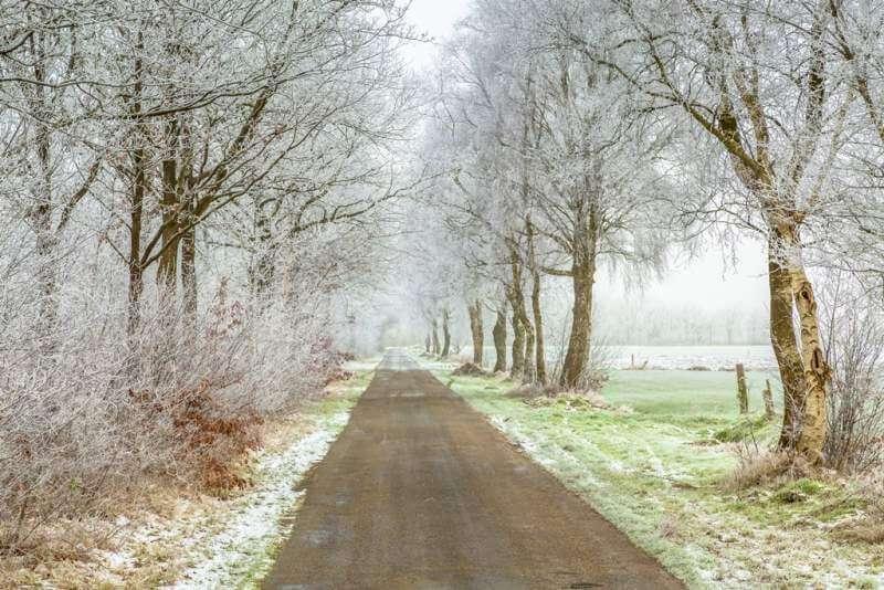 frozen-frisian-winter-road