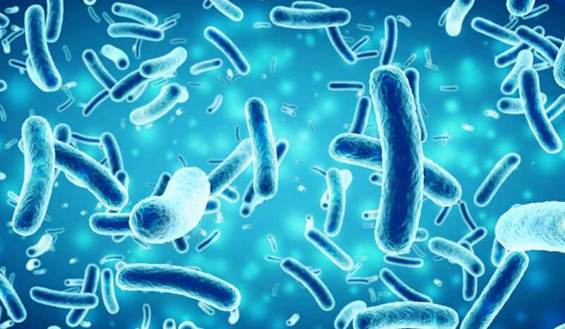 bacteria-in-a-blue-background-3d-illustration