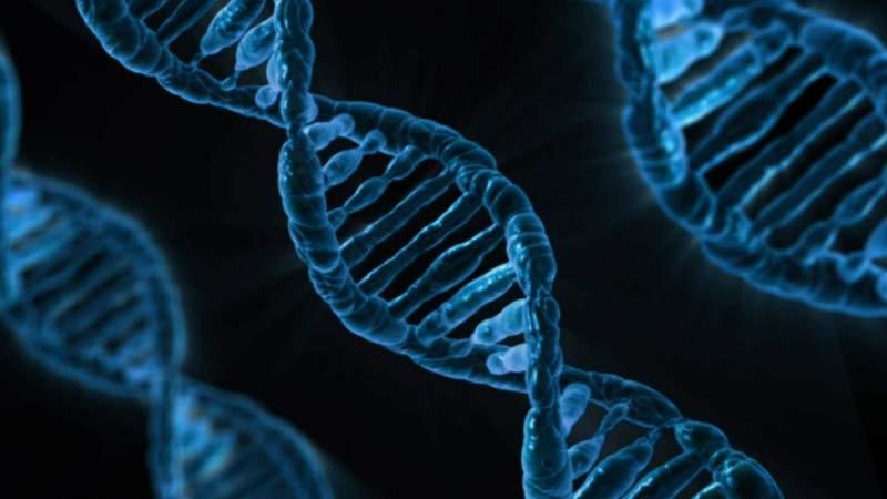 dna-biology-medicine-gene