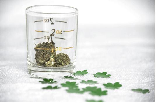 Cannabis Glass